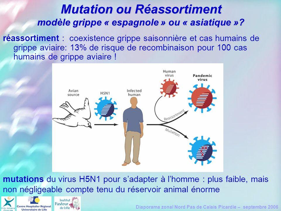 Diaporama zonal Nord Pas de Calais Picardie – septembre 2006 Mutation ou Réassortiment modèle grippe « espagnole » ou « asiatique »? réassortiment : c