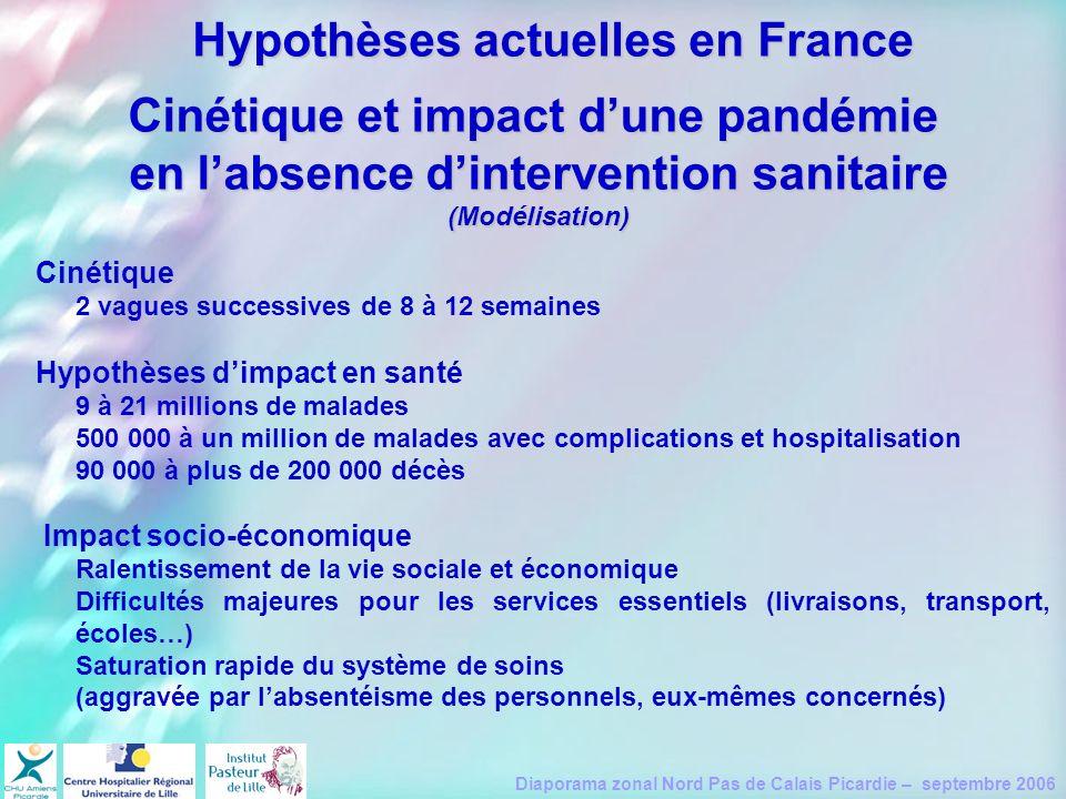 Diaporama zonal Nord Pas de Calais Picardie – septembre 2006 Cinétique et impact dune pandémie en labsence dintervention sanitaire (Modélisation) Ciné