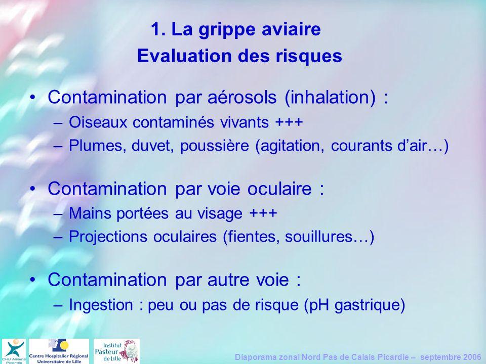 Diaporama zonal Nord Pas de Calais Picardie – septembre 2006 Contamination par aérosols (inhalation) : –Oiseaux contaminés vivants +++ –Plumes, duvet,