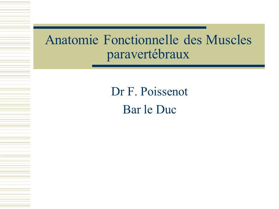Anatomie Fonctionnelle des Muscles paravertébraux Dr F. Poissenot Bar le Duc