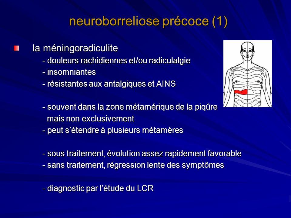 neuroborreliose précoce (1) la méningoradiculite - douleurs rachidiennes et/ou radiculalgie - insomniantes - résistantes aux antalgiques et AINS - sou