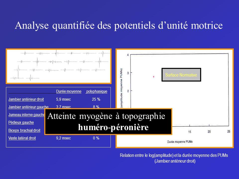 Analyse quantifiée des potentiels dunité motrice Surface Normative Relation entre le log(amplitude) et la durée moyenne des PUMs (Jambier antérieur dr