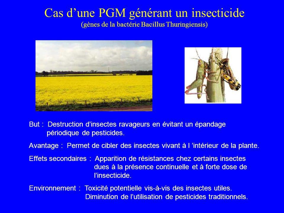Cas dune PGM générant un insecticide (gènes de la bactérie Bacillus Thuringiensis) But : Destruction dinsectes ravageurs en évitant un épandage périodique de pesticides.