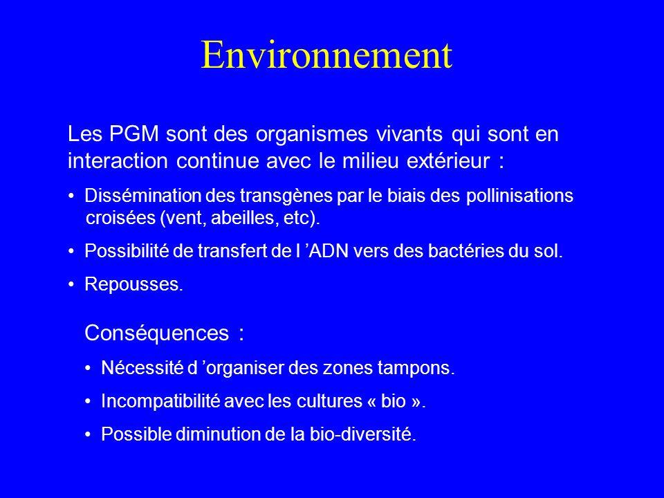 Environnement Les PGM sont des organismes vivants qui sont en interaction continue avec le milieu extérieur : Dissémination des transgènes par le biais des pollinisations croisées (vent, abeilles, etc).