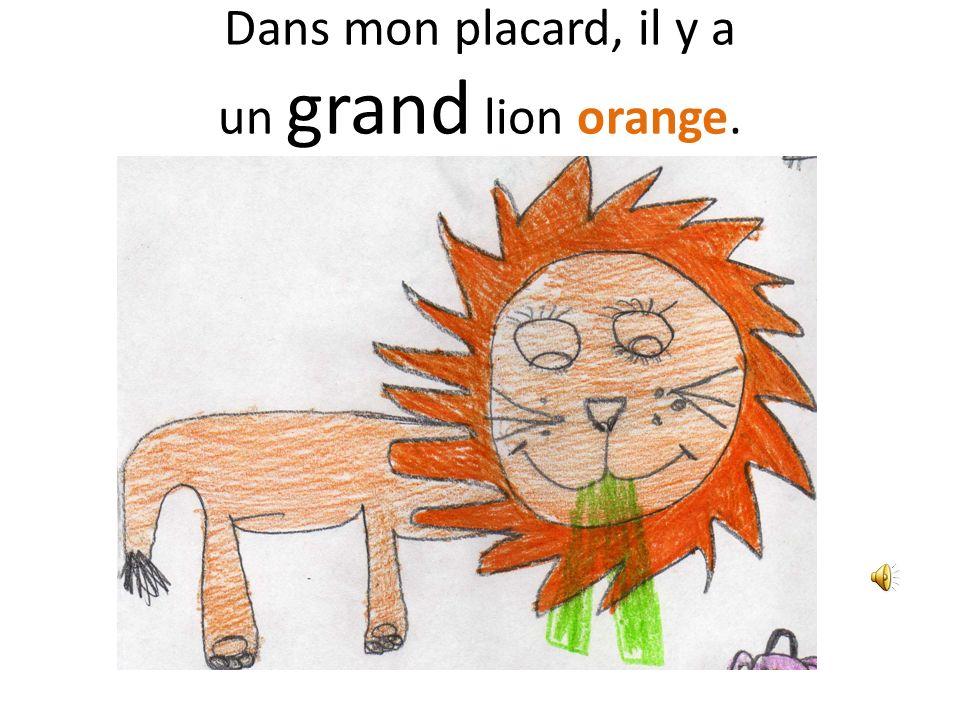 Dans mon placard, il y a un grand lion orange.
