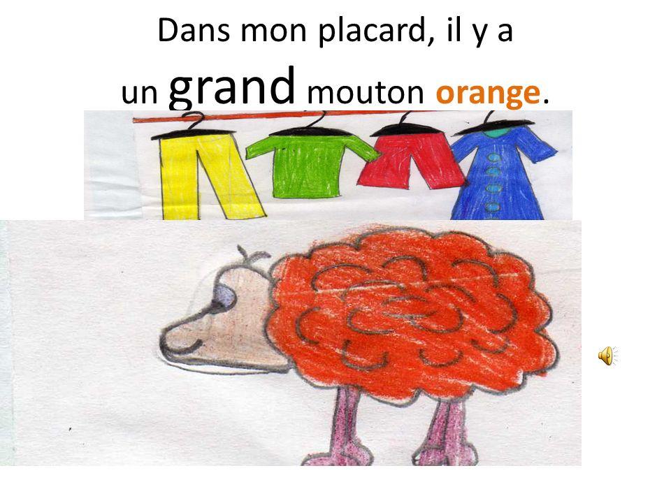 Dans mon placard, il y a un grand mouton orange.