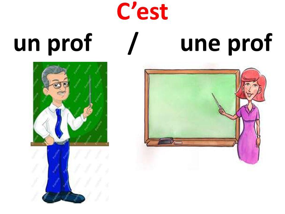 Cest un prof / une prof