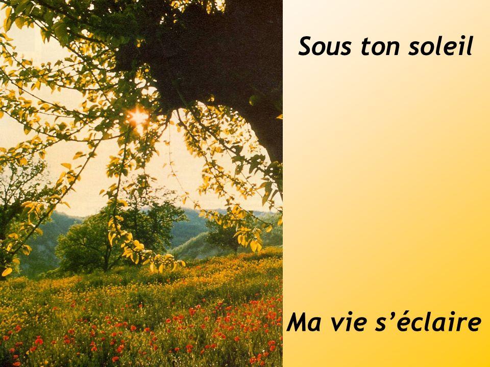 Sous ton soleil Ma vie séclaire