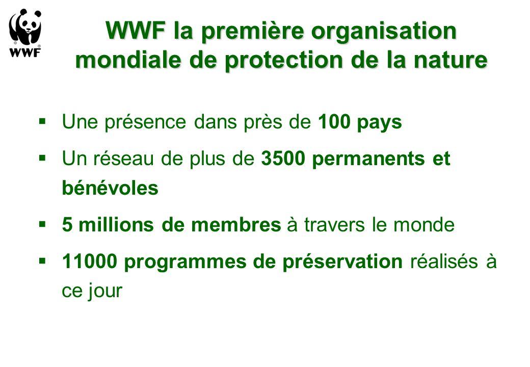 WWF la première organisation mondiale de protection de la nature Une présence dans près de 100 pays Un réseau de plus de 3500 permanents et bénévoles 5 millions de membres à travers le monde 11000 programmes de préservation réalisés à ce jour