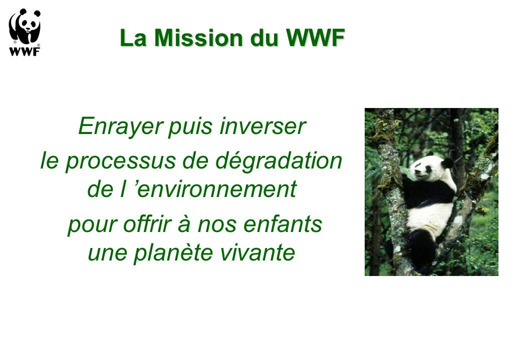 La Mission du WWF Enrayer puis inverser le processus de dégradation de l environnement pour offrir à nos enfants une planète vivante
