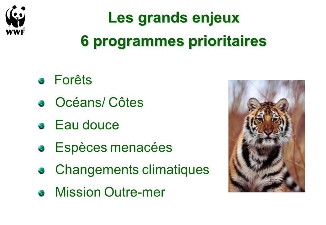 Les grands enjeux 6 programmes prioritaires Forêts Océans/ Côtes Eau douce Espèces menacées Changements climatiques Mission Outre-mer