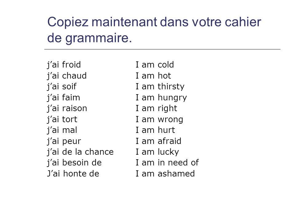 Copiez maintenant dans votre cahier de grammaire.