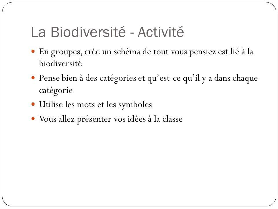 La Biodiversité - Activité En groupes, crée un schéma de tout vous pensiez est lié à la biodiversité Pense bien à des catégories et quest-ce quil y a