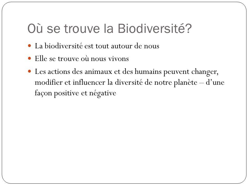 Où se trouve la Biodiversité? La biodiversité est tout autour de nous Elle se trouve où nous vivons Les actions des animaux et des humains peuvent cha