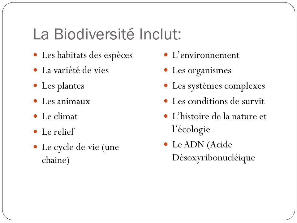 La Biodiversité Inclut: Les habitats des espèces La variété de vies Les plantes Les animaux Le climat Le relief Le cycle de vie (une chaine) Lenvironn