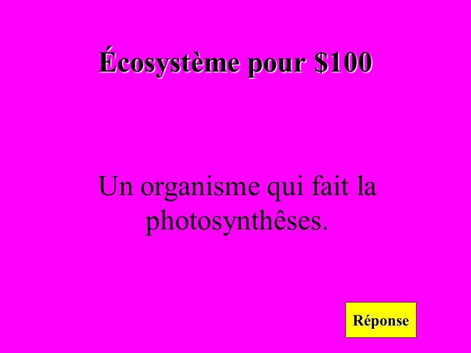 Écosystème pour $100 Réponse Un organisme qui fait la photosynthêses.