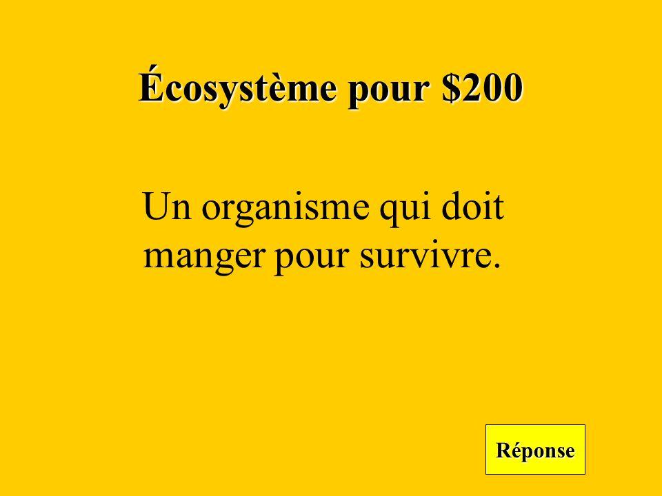 Écosystème pour $200 Réponse Un organisme qui doit manger pour survivre.