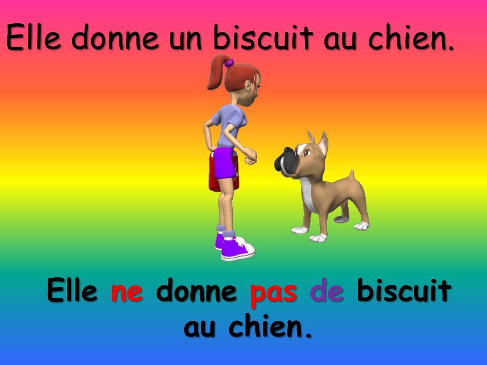 Elle ne donne pas de biscuit au chien. Elle donne un biscuit au chien.