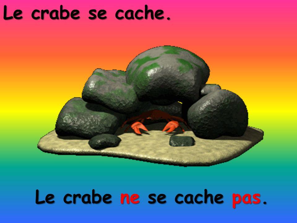 Le crabe ne se cache pas. Le crabe se cache.