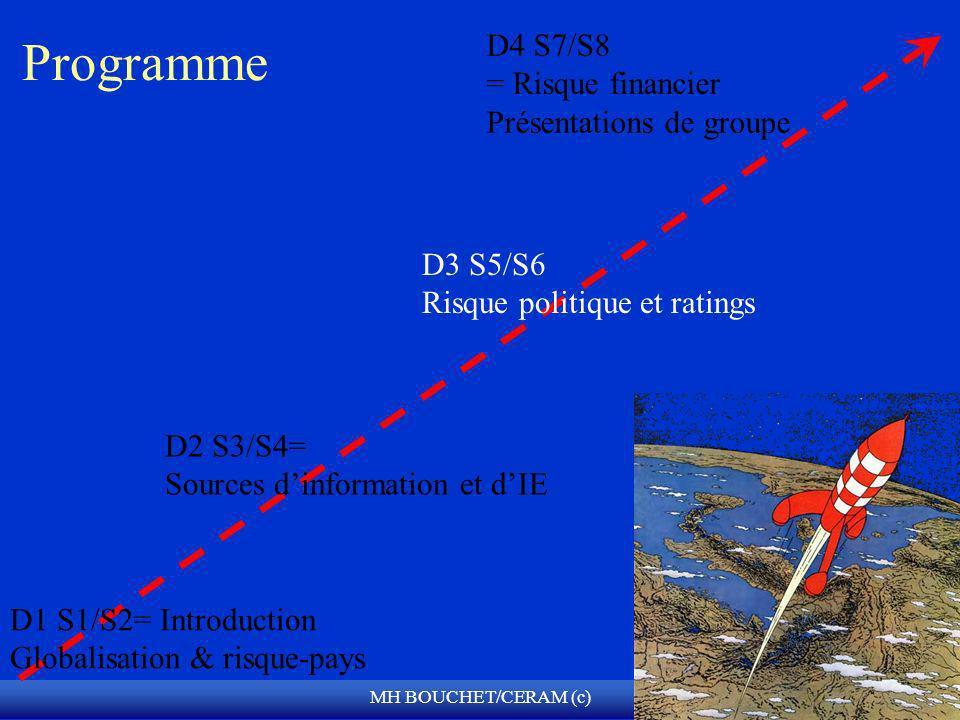 MH BOUCHET/CERAM (c) Programme D1 S1/S2= Introduction Globalisation & risque-pays D2 S3/S4= Sources dinformation et dIE D4 S7/S8 = Risque financier Pr