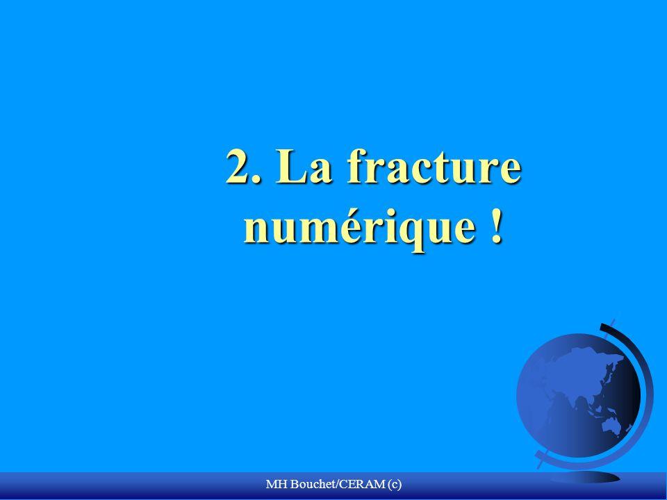 MH Bouchet/CERAM (c) 2. La fracture numérique !