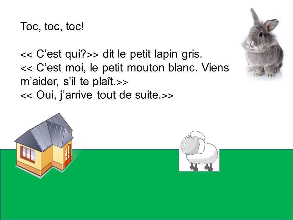 Toc, toc, toc! ˂˂ Cest qui? ˃˃ dit le petit lapin gris. ˂˂ Cest moi, le petit mouton blanc. Viens maider, sil te plaît. ˃˃ ˂˂ Oui, jarrive tout de sui
