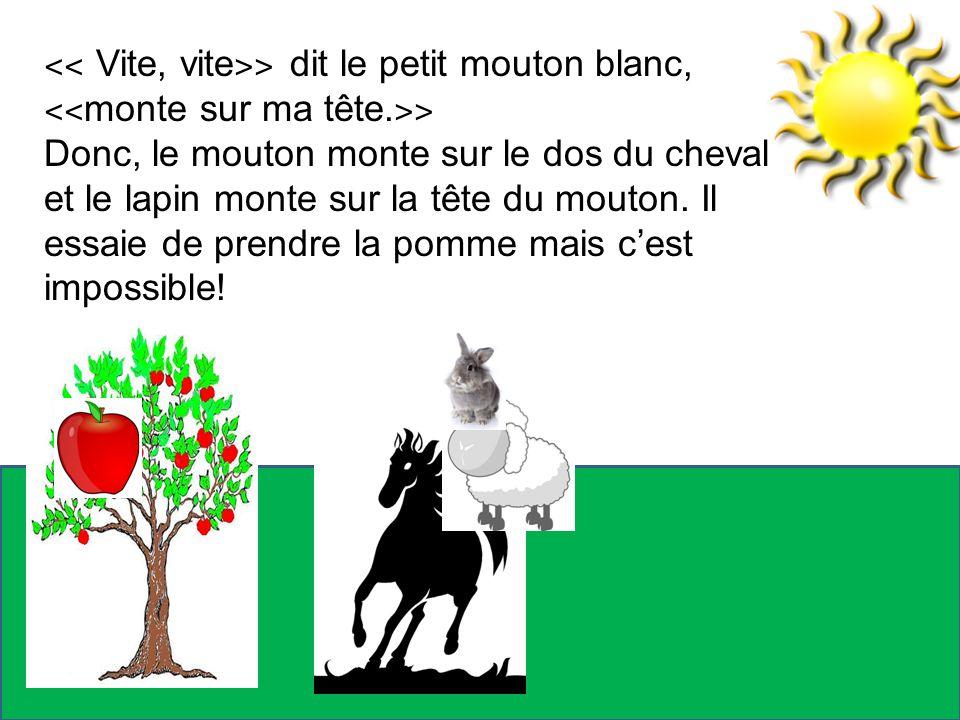 ˂˂ Vite, vite ˃˃ dit le petit mouton blanc, ˂˂ monte sur ma tête. ˃˃ Donc, le mouton monte sur le dos du cheval et le lapin monte sur la tête du mouto