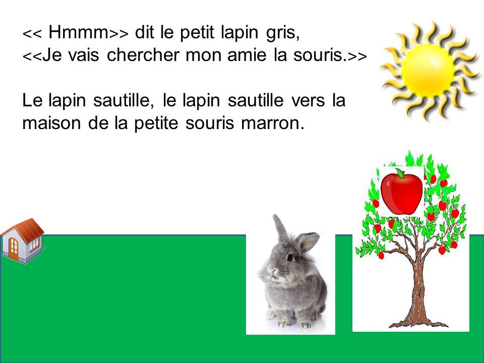 ˂˂ Hmmm ˃˃ dit le petit lapin gris, ˂˂ Je vais chercher mon amie la souris. ˃˃ Le lapin sautille, le lapin sautille vers la maison de la petite souris
