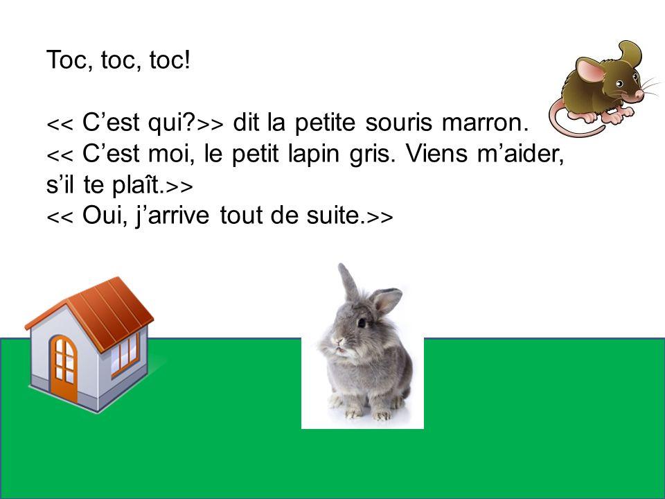 Toc, toc, toc! ˂˂ Cest qui? ˃˃ dit la petite souris marron. ˂˂ Cest moi, le petit lapin gris. Viens maider, sil te plaît. ˃˃ ˂˂ Oui, jarrive tout de s