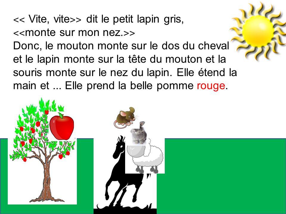 ˂˂ Vite, vite ˃˃ dit le petit lapin gris, ˂˂ monte sur mon nez. ˃˃ Donc, le mouton monte sur le dos du cheval et le lapin monte sur la tête du mouton