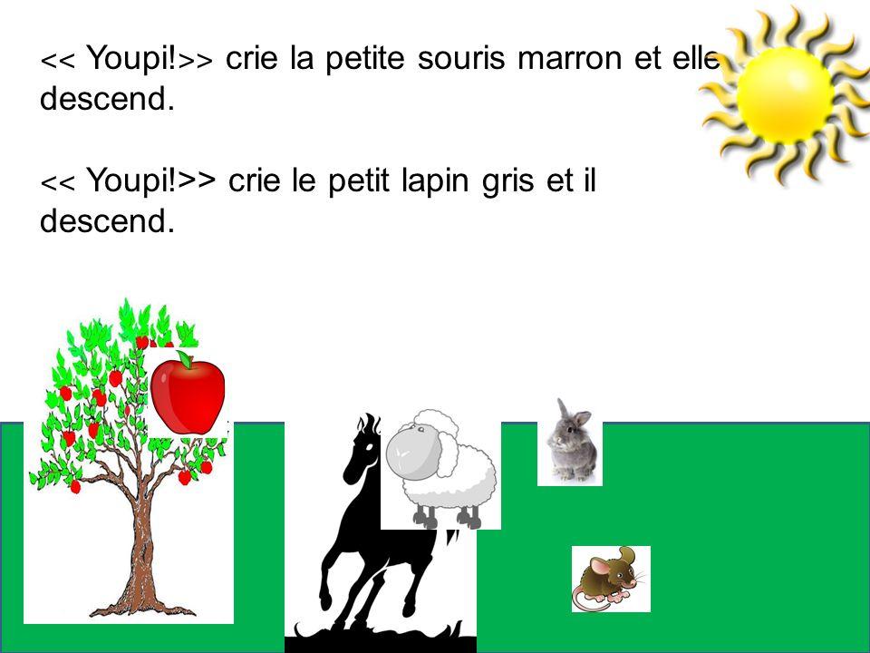 ˂˂ Youpi! ˃˃ crie la petite souris marron et elle descend. ˂˂ Youpi!>> crie le petit lapin gris et il descend.