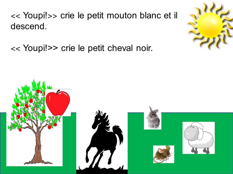 ˂˂ Youpi! ˃˃ crie le petit mouton blanc et il descend. ˂˂ Youpi!>> crie le petit cheval noir.