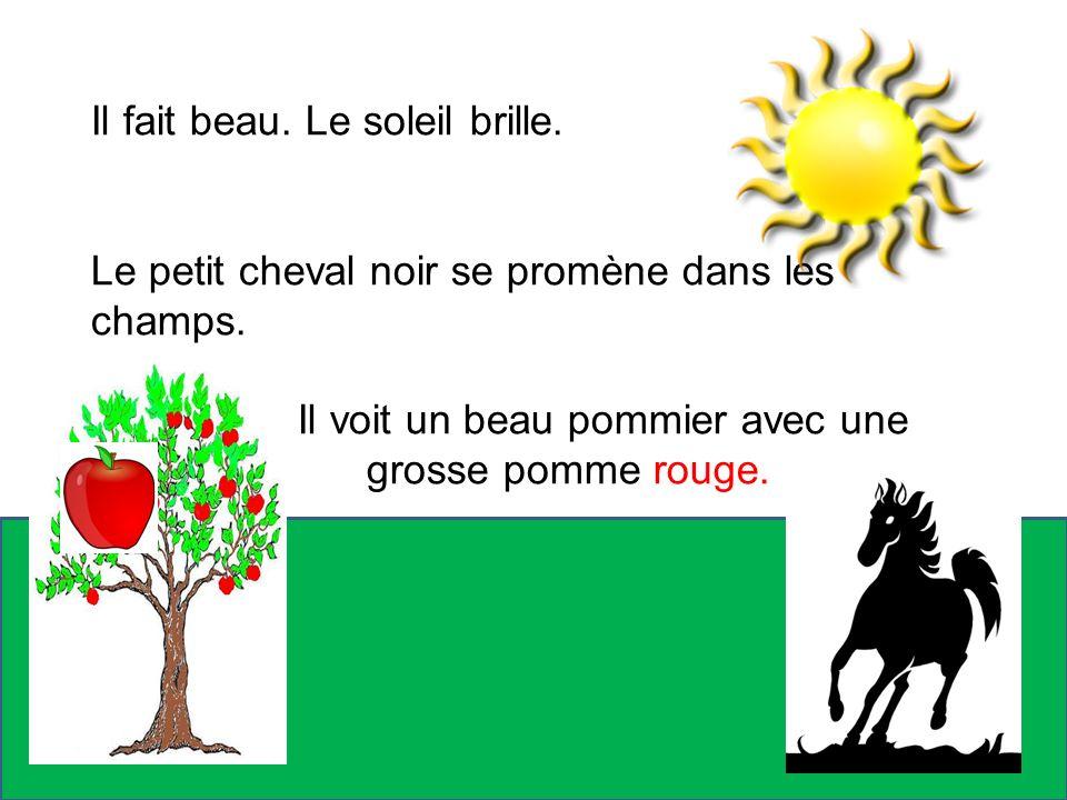 Il fait beau. Le soleil brille. Le petit cheval noir se promène dans les champs. Il voit un beau pommier avec une grosse pomme rouge.