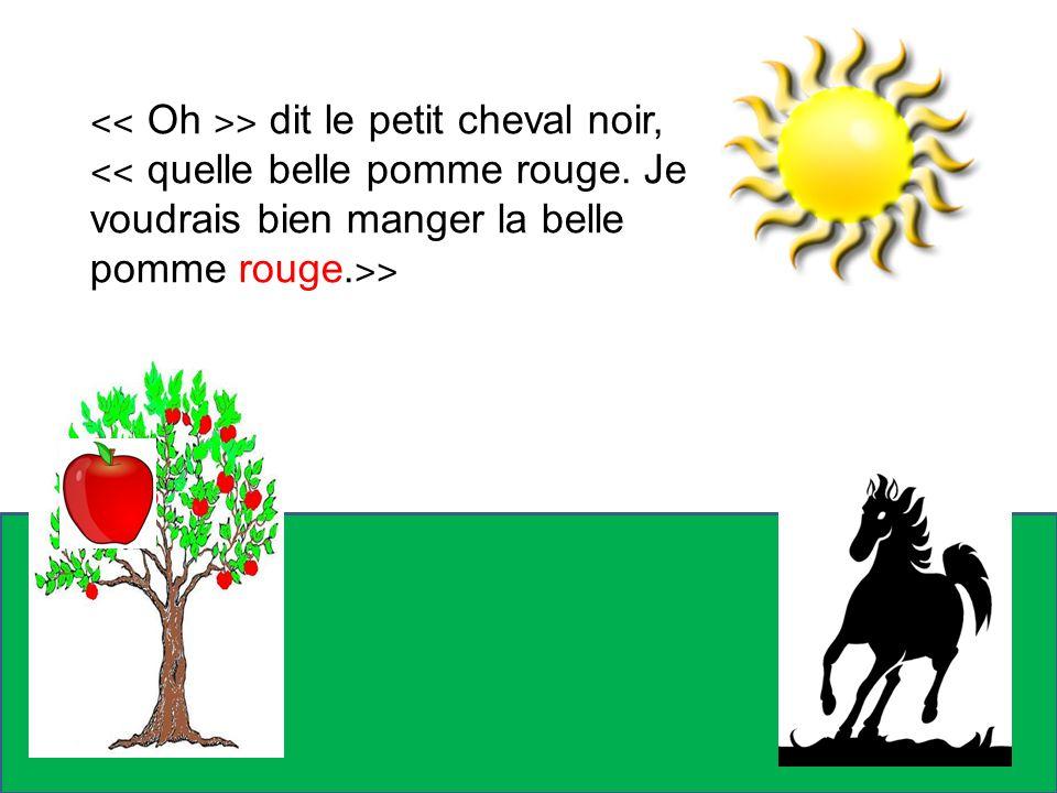 Alors, le petit cheval noir essaie de prendre la pomme mais cest impossible.