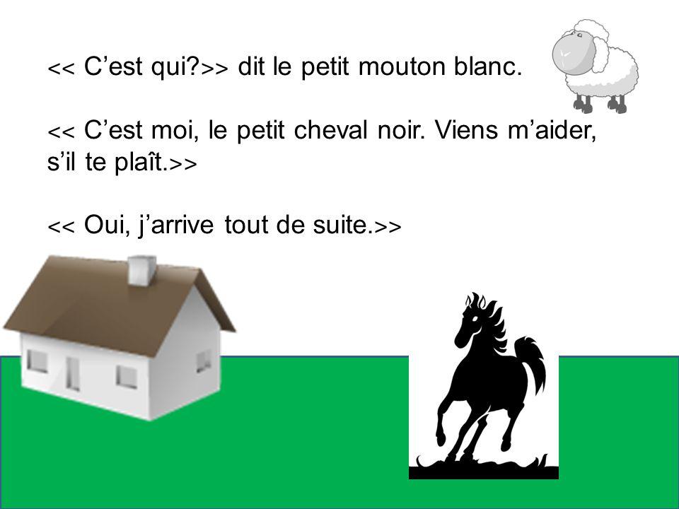 ˂˂ Cest qui? ˃˃ dit le petit mouton blanc. ˂˂ Cest moi, le petit cheval noir. Viens maider, sil te plaît. ˃˃ ˂˂ Oui, jarrive tout de suite. ˃˃