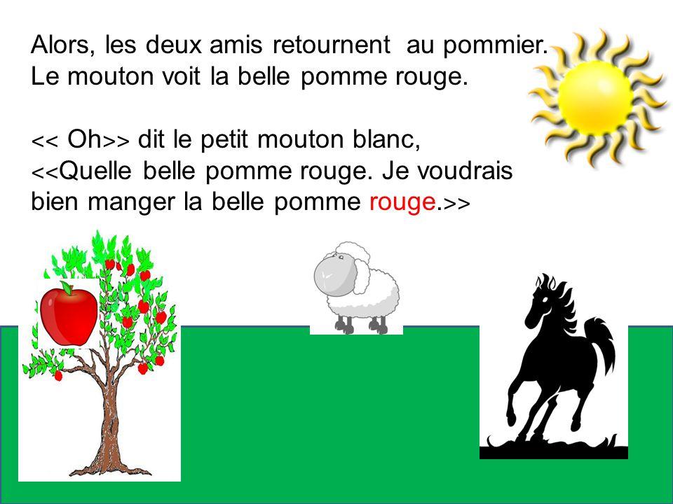 Alors, les deux amis retournent au pommier. Le mouton voit la belle pomme rouge. ˂˂ Oh ˃˃ dit le petit mouton blanc, ˂˂ Quelle belle pomme rouge. Je v