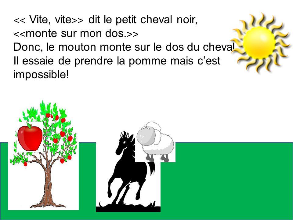 ˂˂ Vite, vite ˃˃ dit le petit cheval noir, ˂˂ monte sur mon dos. ˃˃ Donc, le mouton monte sur le dos du cheval. Il essaie de prendre la pomme mais ces