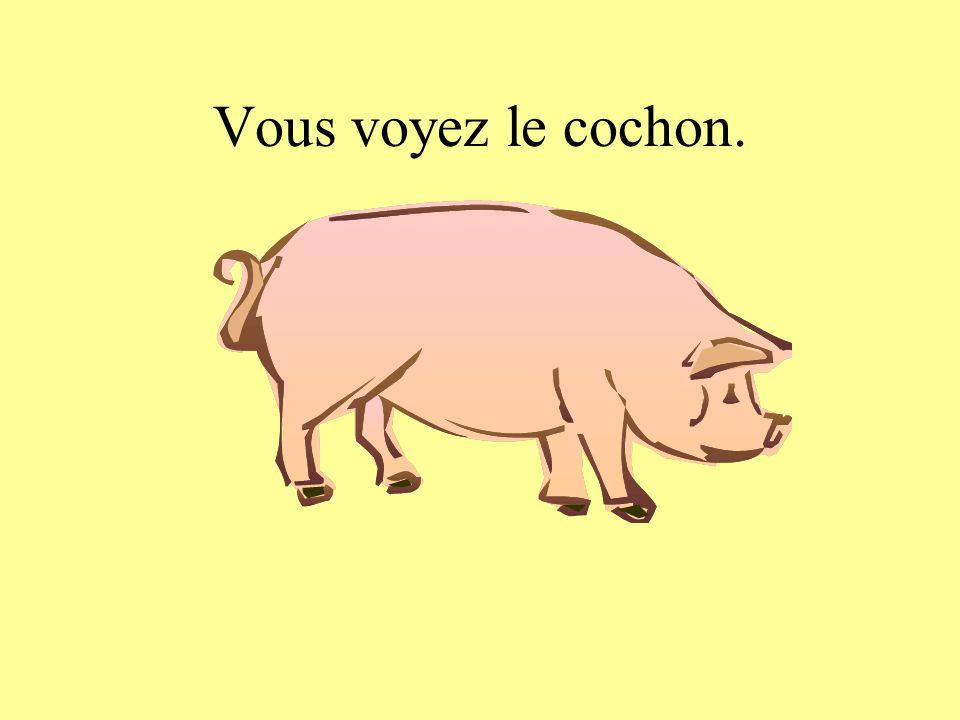 Vous voyez le cochon.