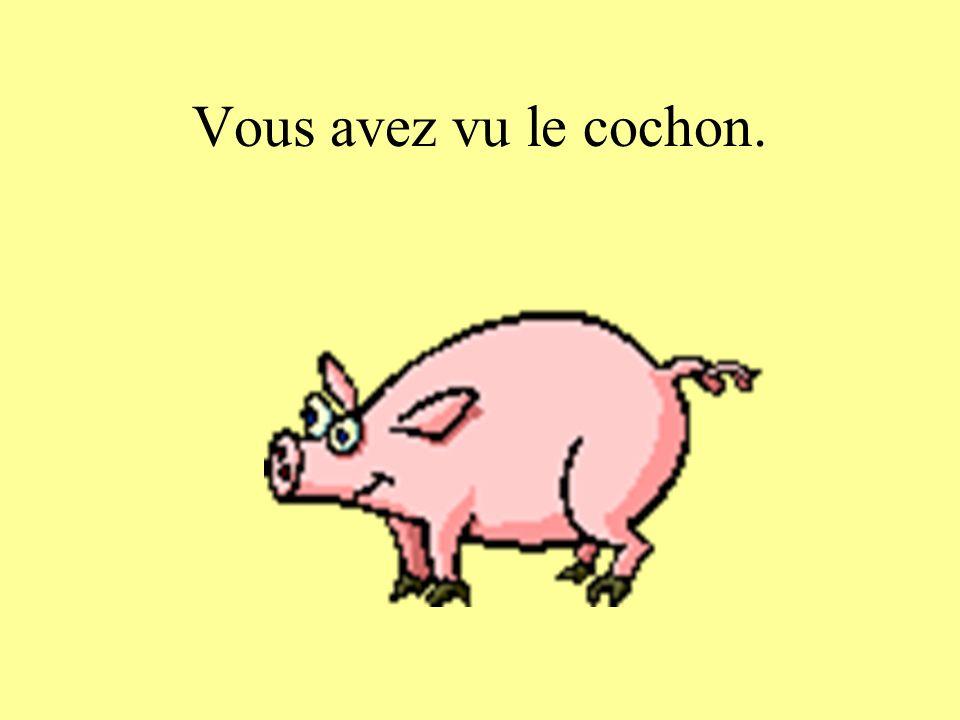 Vous avez vu le cochon.