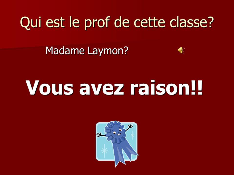 Qui est le prof de cette classe? Madame Laymon? Vous avez raison!!
