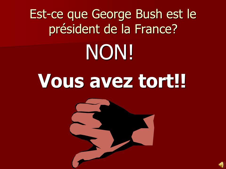 Est-ce que George Bush est le président de la France? NON! Vous avez tort!!