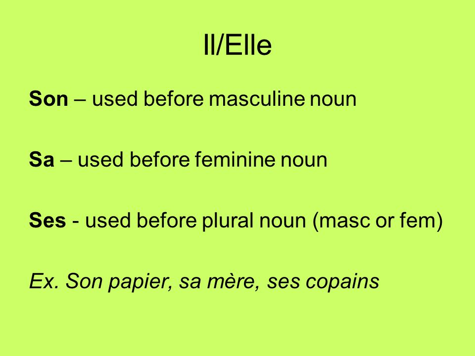 Il/Elle Son – used before masculine noun Sa – used before feminine noun Ses - used before plural noun (masc or fem) Ex.