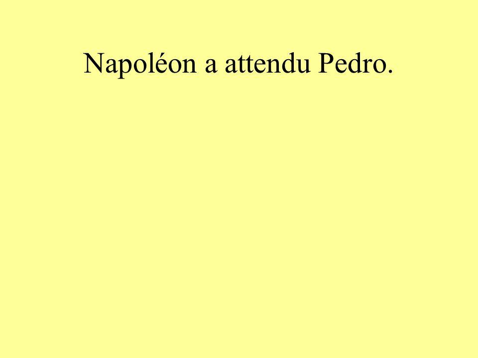 Napoléon a attendu Pedro.