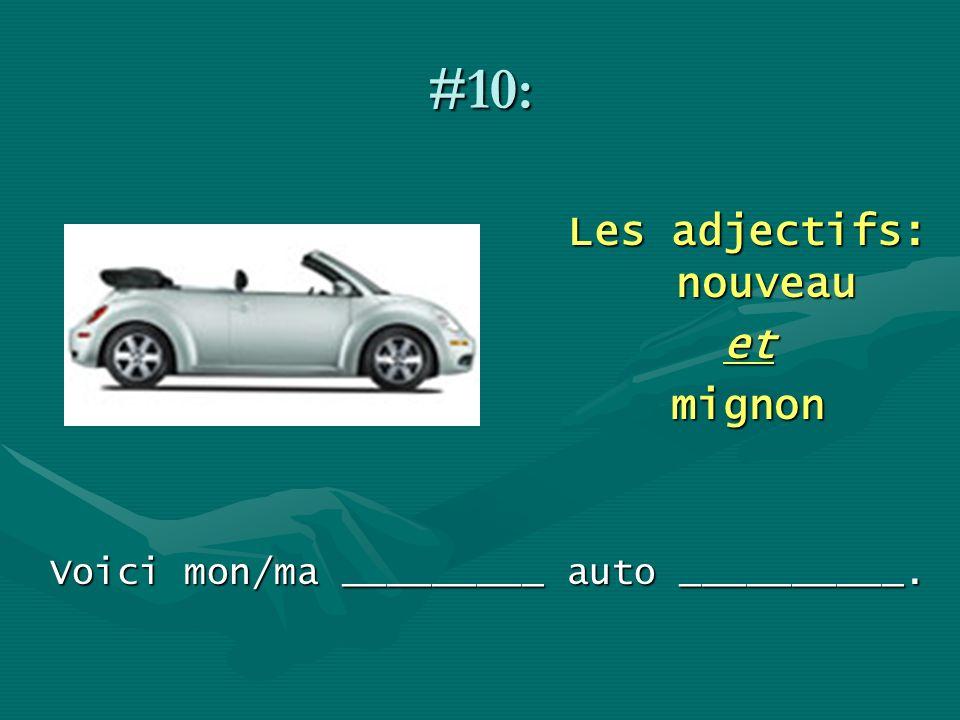 #10: Les adjectifs: nouveau etmignon Voici mon/ma _________ auto __________.
