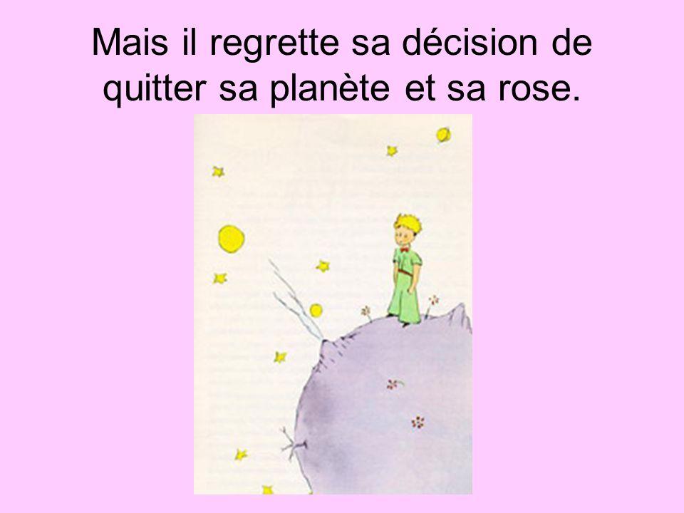 Mais il regrette sa décision de quitter sa planète et sa rose.