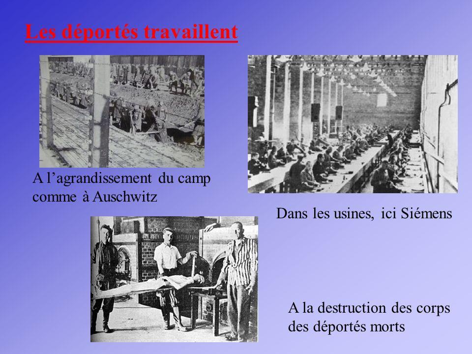 Dans les usines, ici Siémens Les déportés travaillent A lagrandissement du camp comme à Auschwitz A la destruction des corps des déportés morts