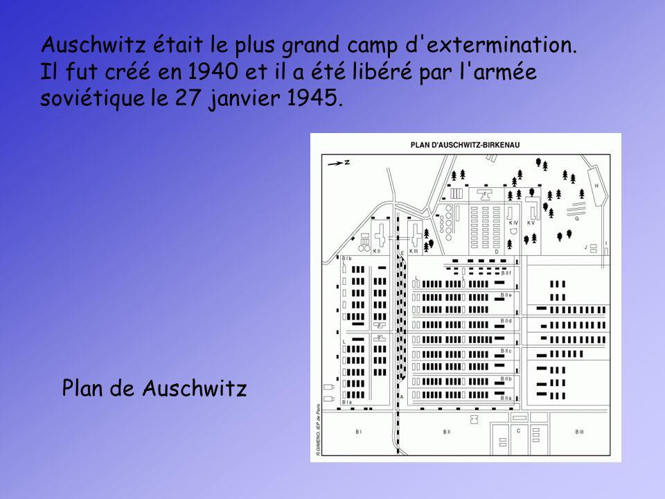 Plan de Auschwitz Auschwitz était le plus grand camp d'extermination. Il fut créé en 1940 et il a été libéré par l'armée soviétique le 27 janvier 1945