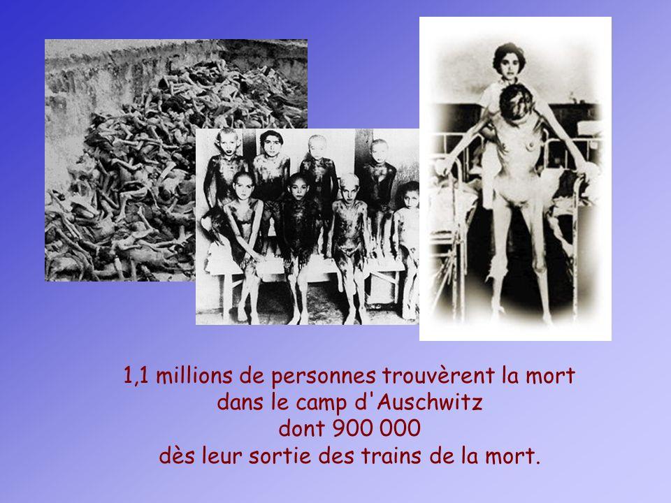 1,1 millions de personnes trouvèrent la mort dans le camp d'Auschwitz dont 900 000 dès leur sortie des trains de la mort.