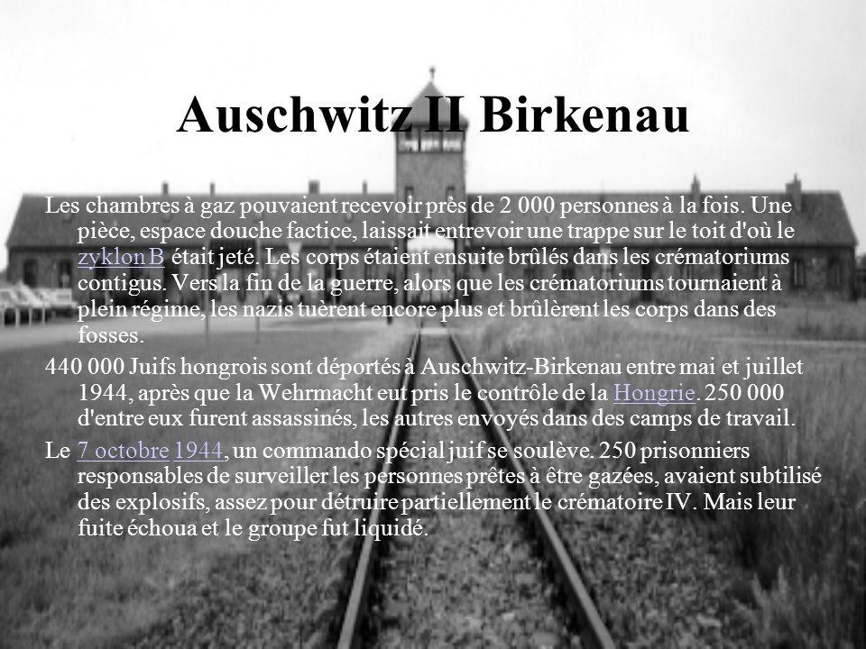 Auschwitz II Birkenau Les chambres à gaz pouvaient recevoir près de 2 000 personnes à la fois. Une pièce, espace douche factice, laissait entrevoir un