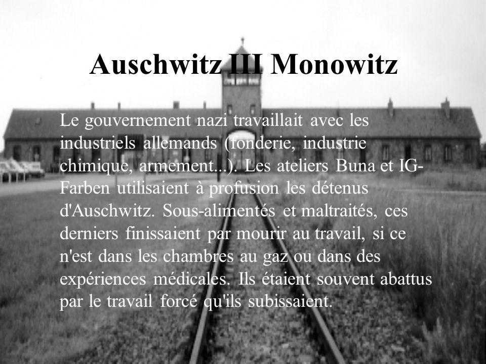 Auschwitz III Monowitz Le gouvernement nazi travaillait avec les industriels allemands (fonderie, industrie chimique, armement...). Les ateliers Buna